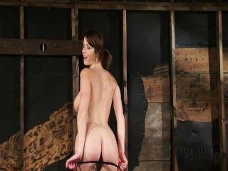 Emily Addison Wunderbaren Körper Gebunden Und Durch Fickmaschine Gefickt - Orgasmen