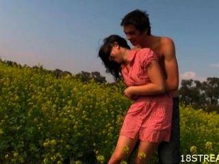 Delighful Sex Auf Den Blumenfeldern
